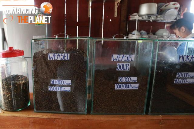 Weasel Coffee Beans in Vietnam