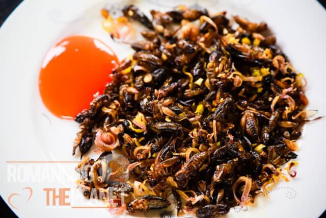 Weird food - Fried crickets