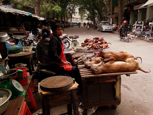 Woman selling dog meat