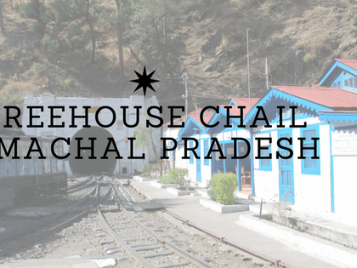 Treehouse Chail Himachal Pradesh Featured image