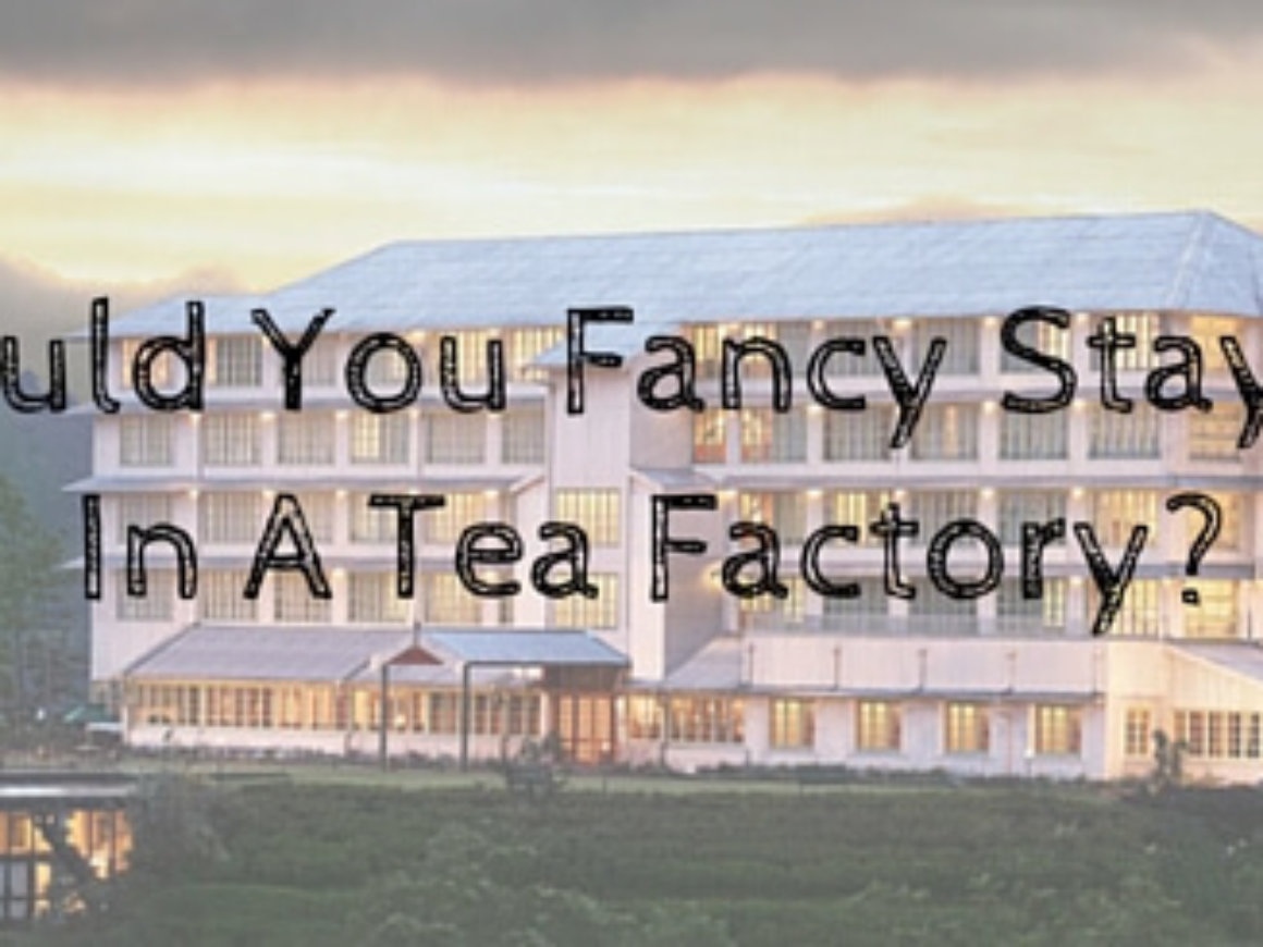 Would You Fancy Staying In A Tea Factory-